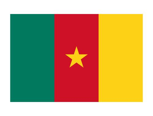 We helped a Cameroon client draft a regional exclusive agency agreement.